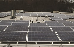 Bluebird Auto Rental Systems installed solar panels on the roof of its office. Photo courtesy of Bluebird Auto Rental Systems.