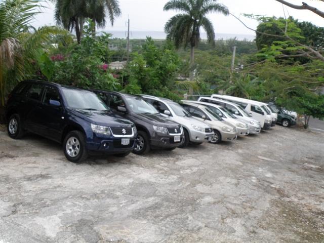 Rental Car Companies Jamaica