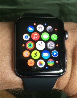Apps on the Apple Watch. Photo via